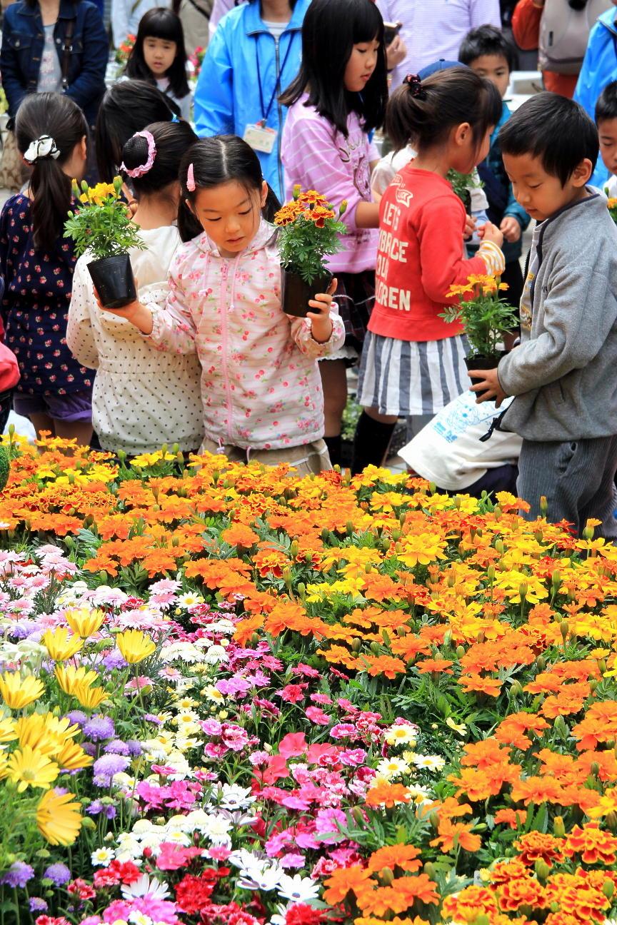 花と緑のまちづくりフェア2015