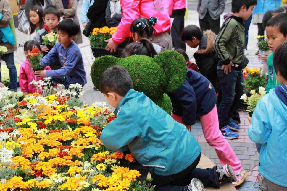 花と緑のまちづくりフェア2012報告2
